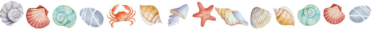Sealife divider