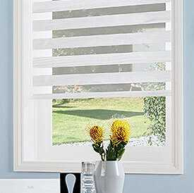 Image of Twist Vision Blinds