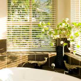 Image of Venetian Blinds
